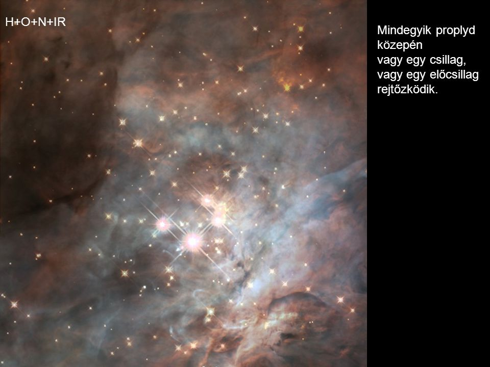 H+O+N+IR Mindegyik proplyd közepén vagy egy csillag, vagy egy előcsillag rejtőzködik.