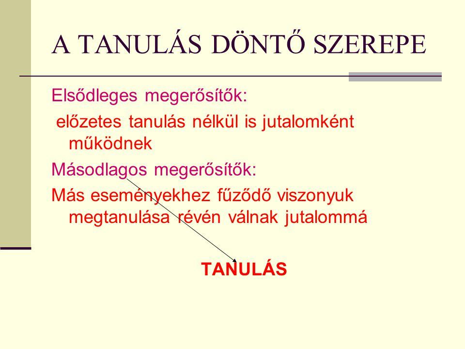 A TANULÁS DÖNTŐ SZEREPE