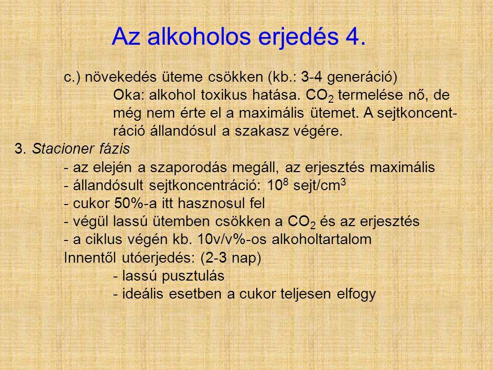 Az alkoholos erjedés 4. c.) növekedés üteme csökken (kb.: 3-4 generáció)