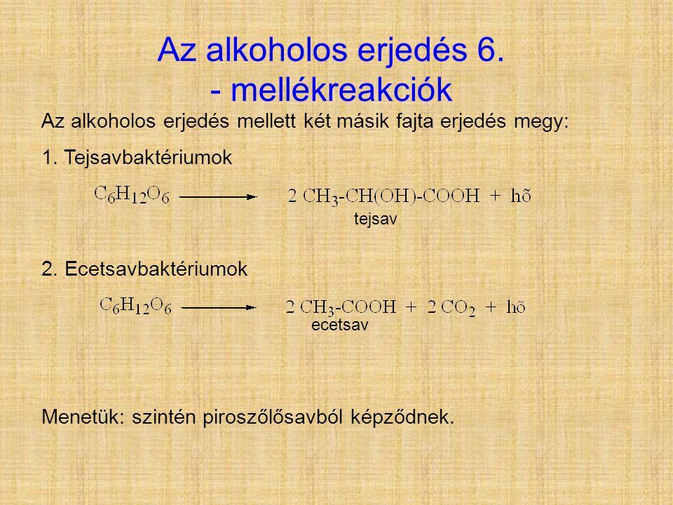 Az alkoholos erjedés 6. - mellékreakciók