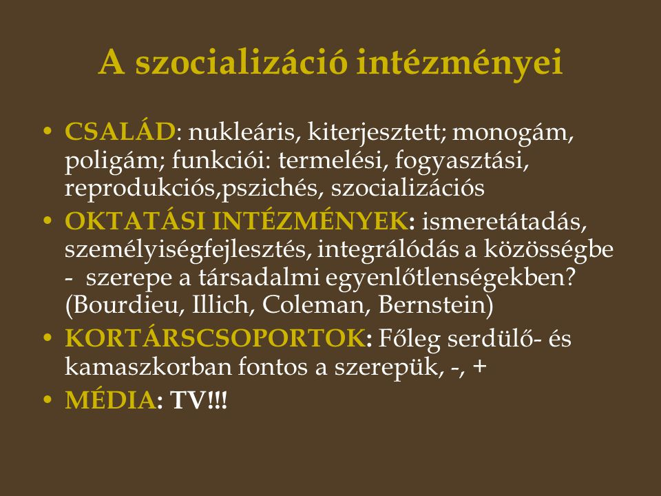 A szocializáció intézményei