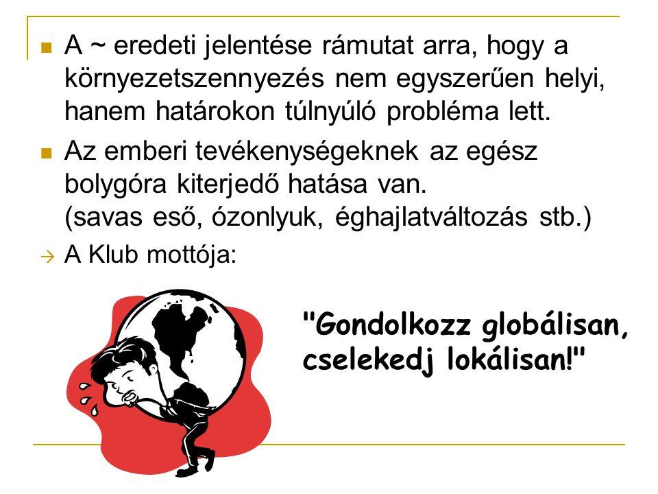 Gondolkozz globálisan, cselekedj lokálisan!