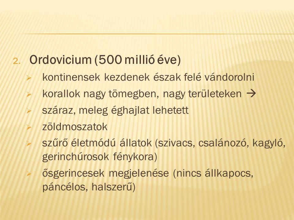 Ordovicium (500 millió éve)