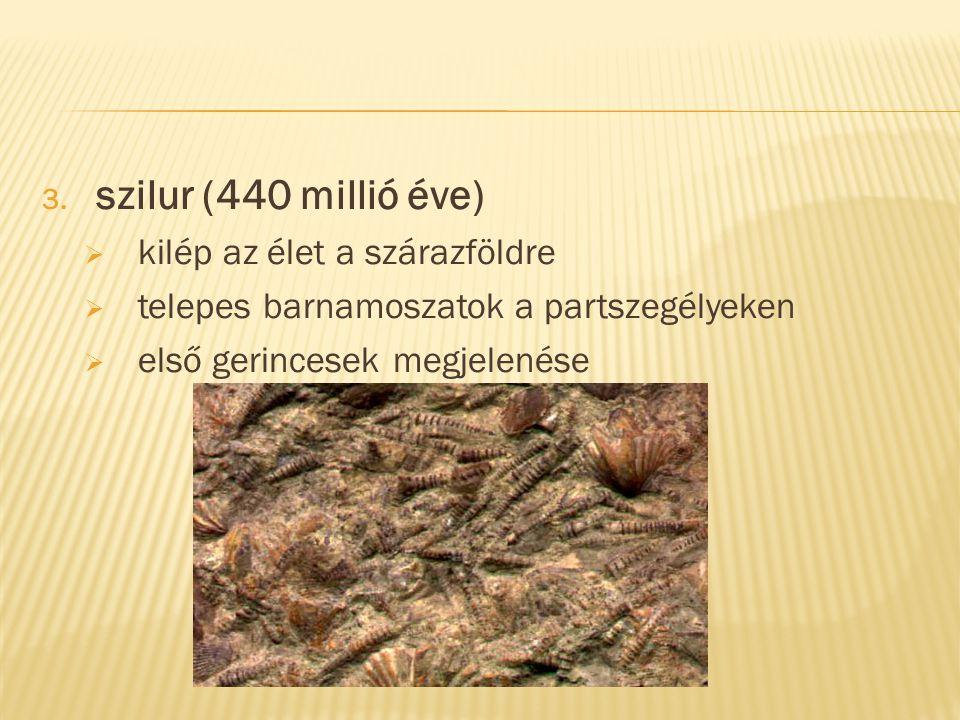 szilur (440 millió éve) kilép az élet a szárazföldre