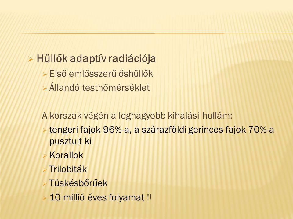Hüllők adaptív radiációja