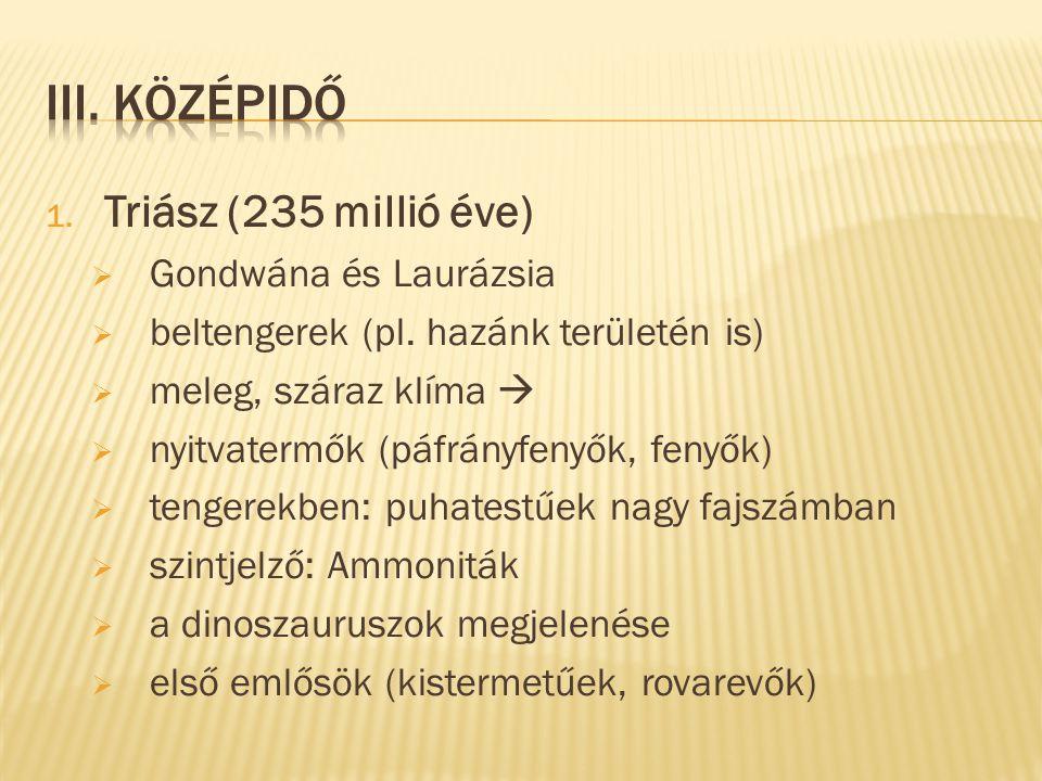 III. Középidő Triász (235 millió éve) Gondwána és Laurázsia