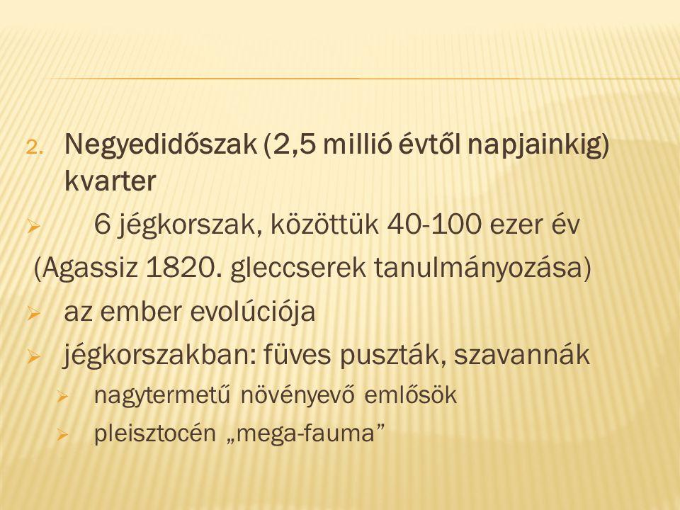 Negyedidőszak (2,5 millió évtől napjainkig) kvarter