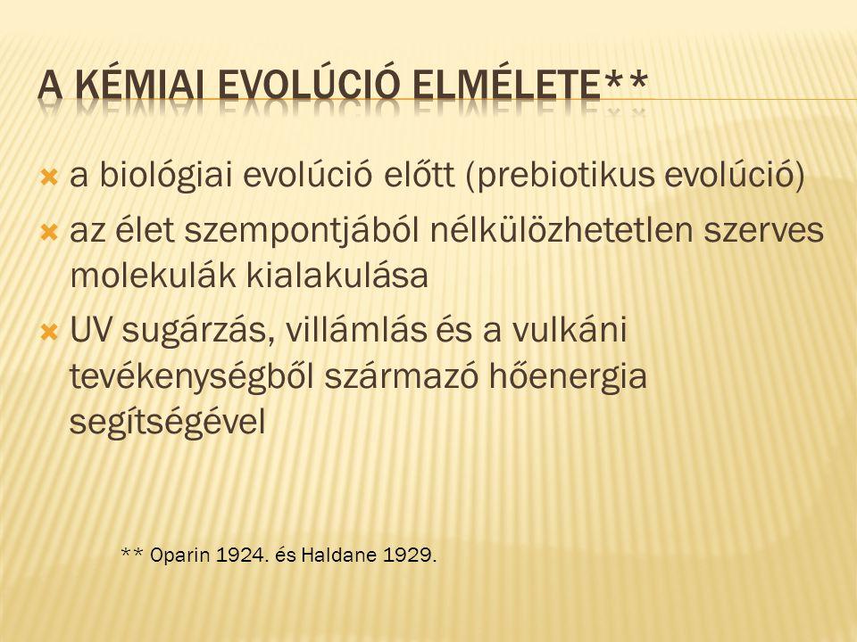 A kémiai evolúció elmélete**