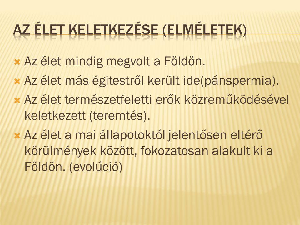 Az ÉLET KELETKEZÉSE (elméletek)