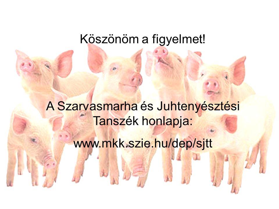 A Szarvasmarha és Juhtenyésztési Tanszék honlapja: