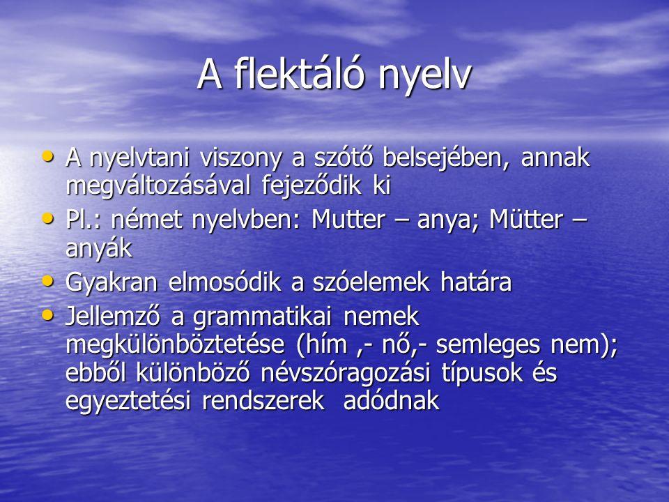 A flektáló nyelv A nyelvtani viszony a szótő belsejében, annak megváltozásával fejeződik ki. Pl.: német nyelvben: Mutter – anya; Mütter – anyák.