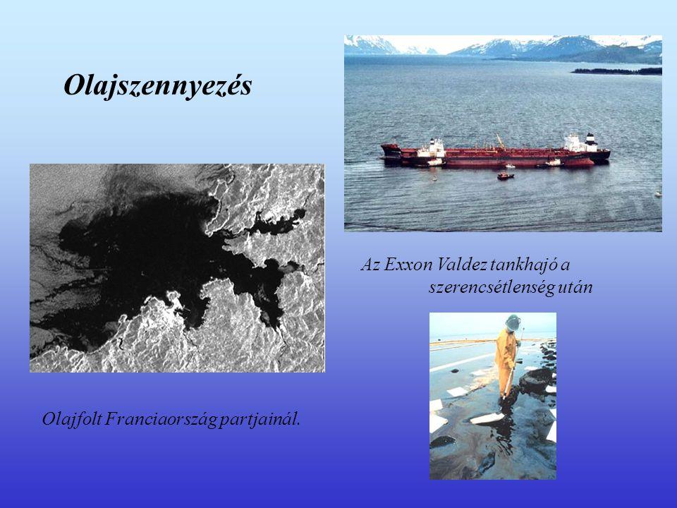 Olajszennyezés Az Exxon Valdez tankhajó a szerencsétlenség után