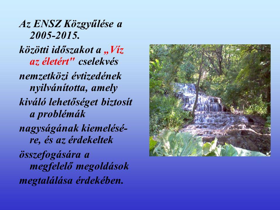 """Az ENSZ Közgyűlése a 2005-2015. közötti időszakot a """"Víz az életért cselekvés. nemzetközi évtizedének nyilvánította, amely."""