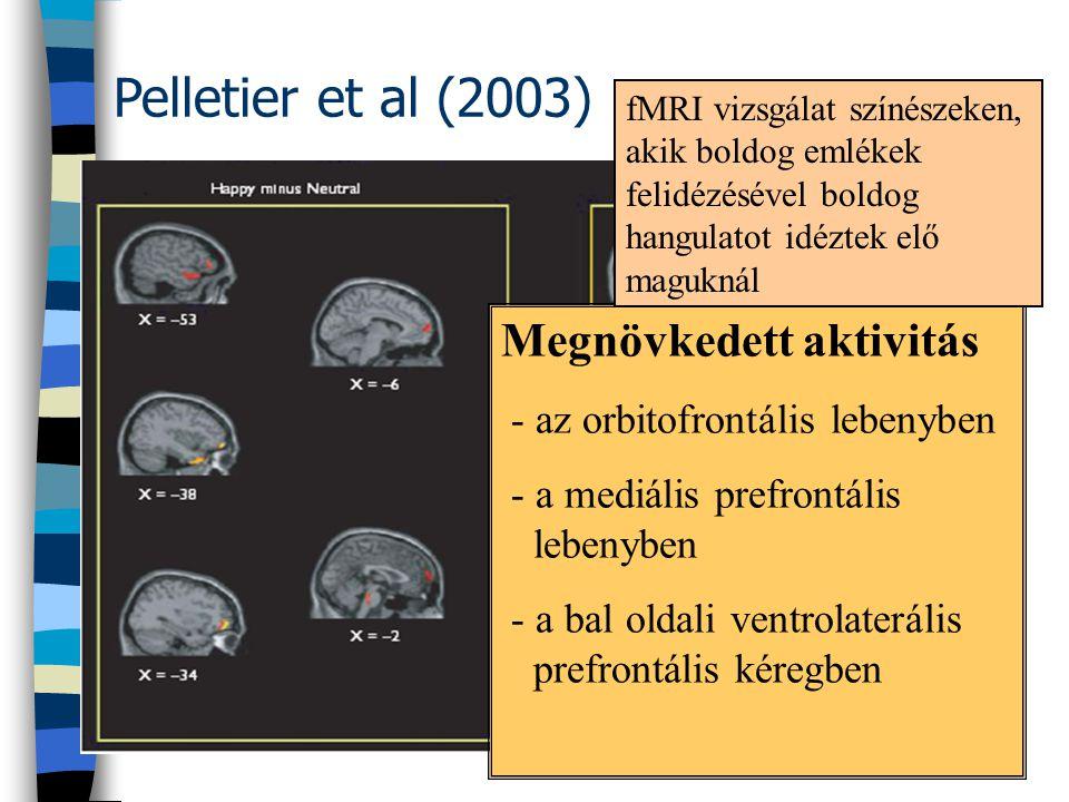Pelletier et al (2003) Megnövkedett aktivitás