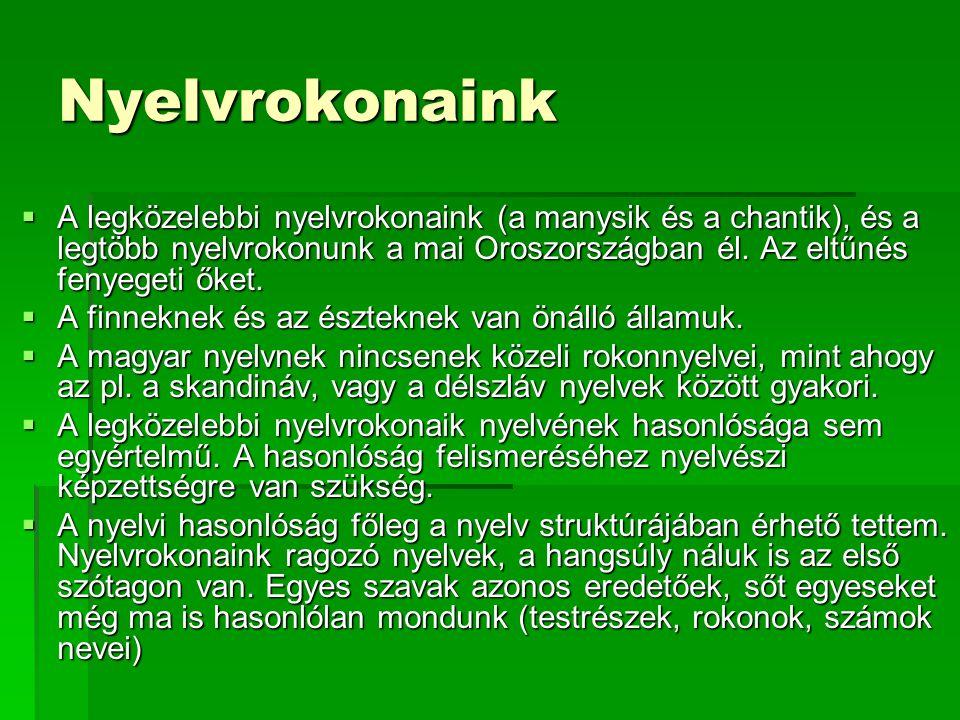 Nyelvrokonaink A legközelebbi nyelvrokonaink (a manysik és a chantik), és a legtöbb nyelvrokonunk a mai Oroszországban él. Az eltűnés fenyegeti őket.