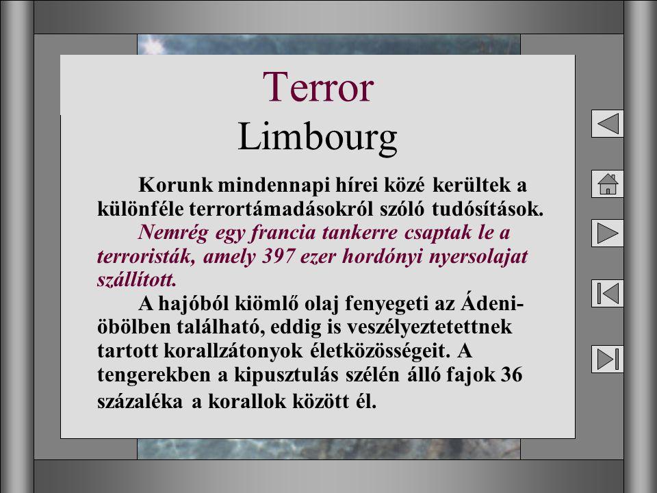 Terror Limbourg.