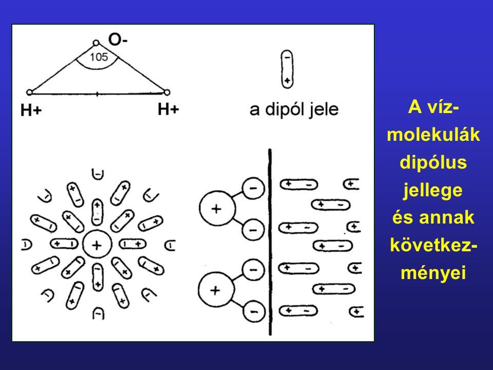 A víz-molekulák dipólus jellege és annak következ-ményei
