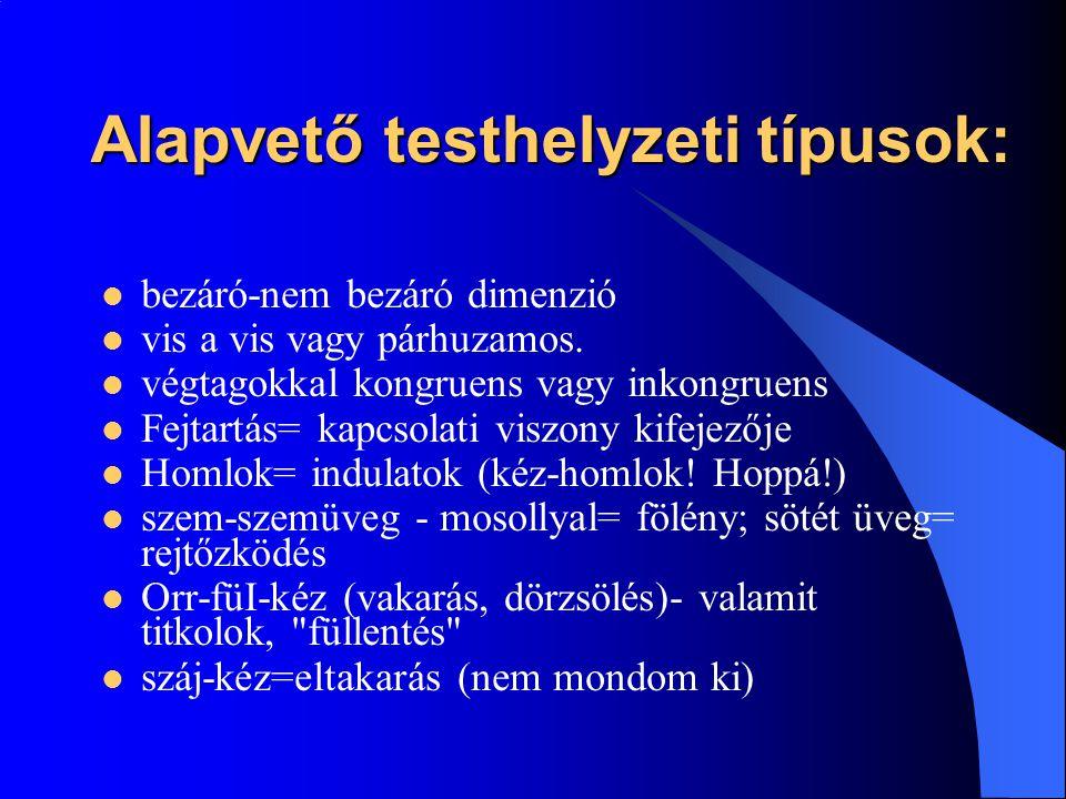Alapvető testhelyzeti típusok: