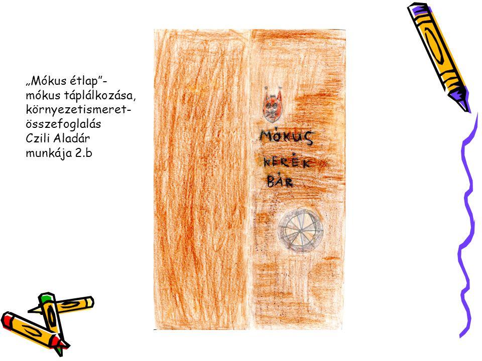 """""""Mókus étlap - mókus táplálkozása, környezetismeret-összefoglalás Czili Aladár munkája 2.b"""