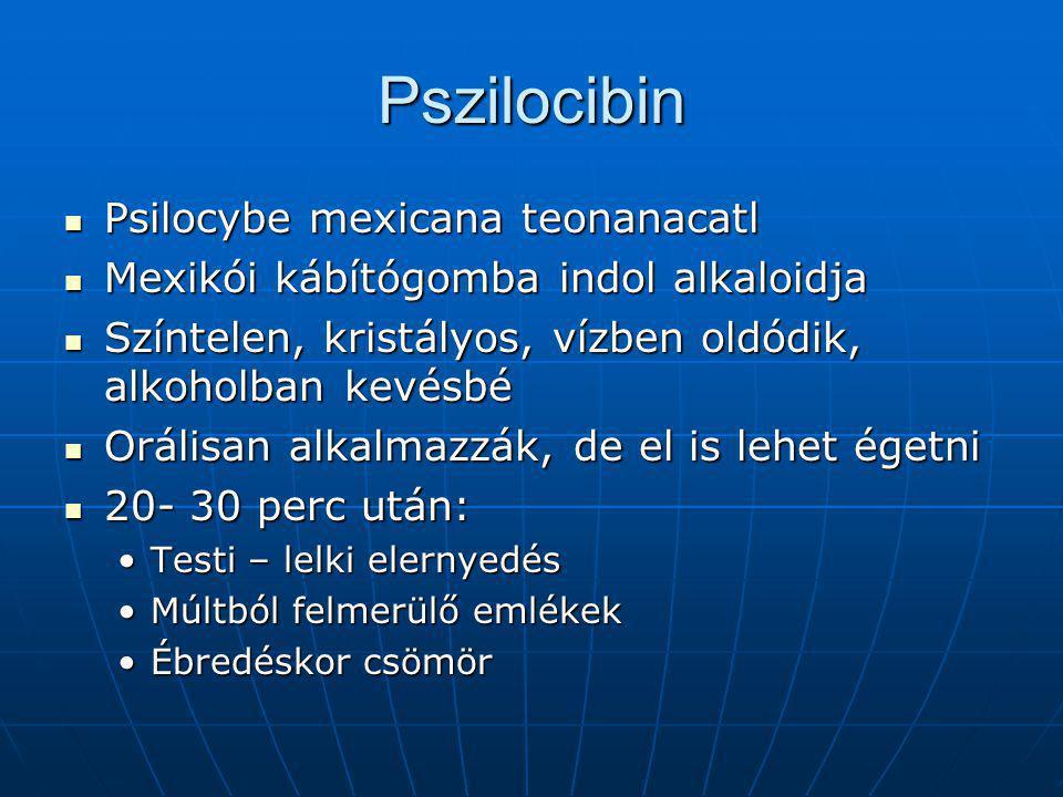 Pszilocibin Psilocybe mexicana teonanacatl