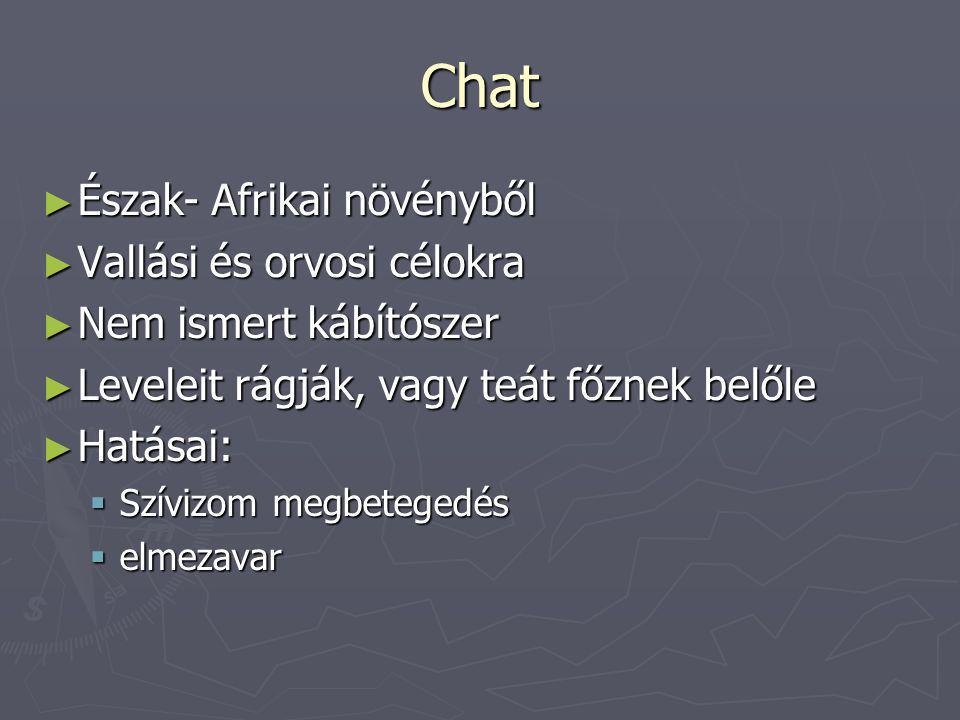 Chat Észak- Afrikai növényből Vallási és orvosi célokra