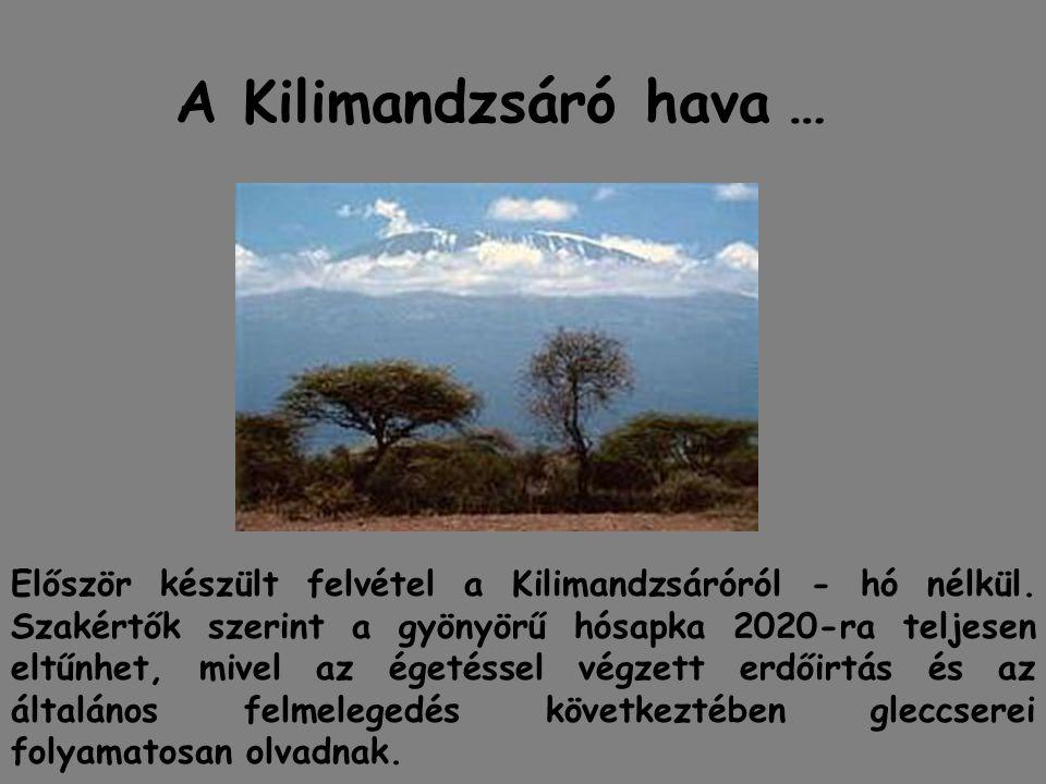 A Kilimandzsáró hava …