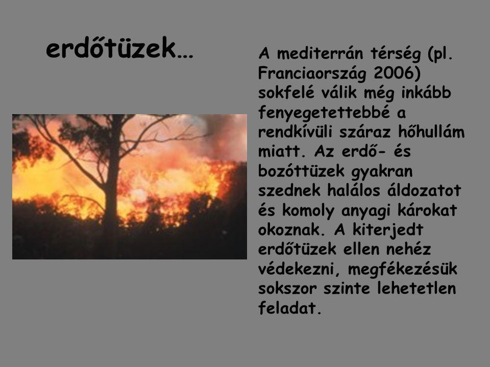erdőtüzek…