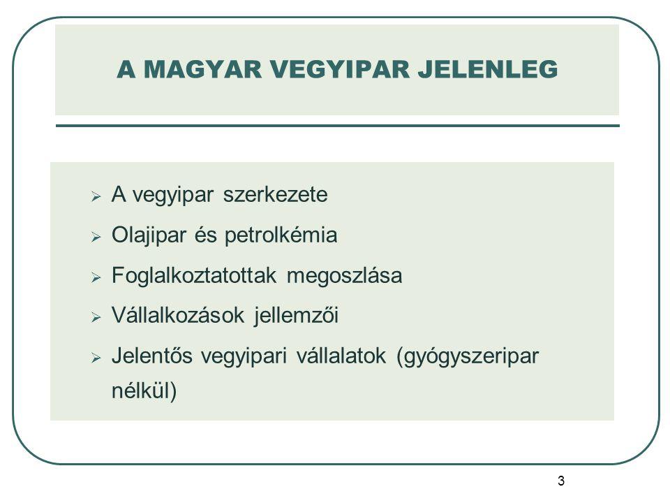 A MAGYAR VEGYIPAR JELENLEG