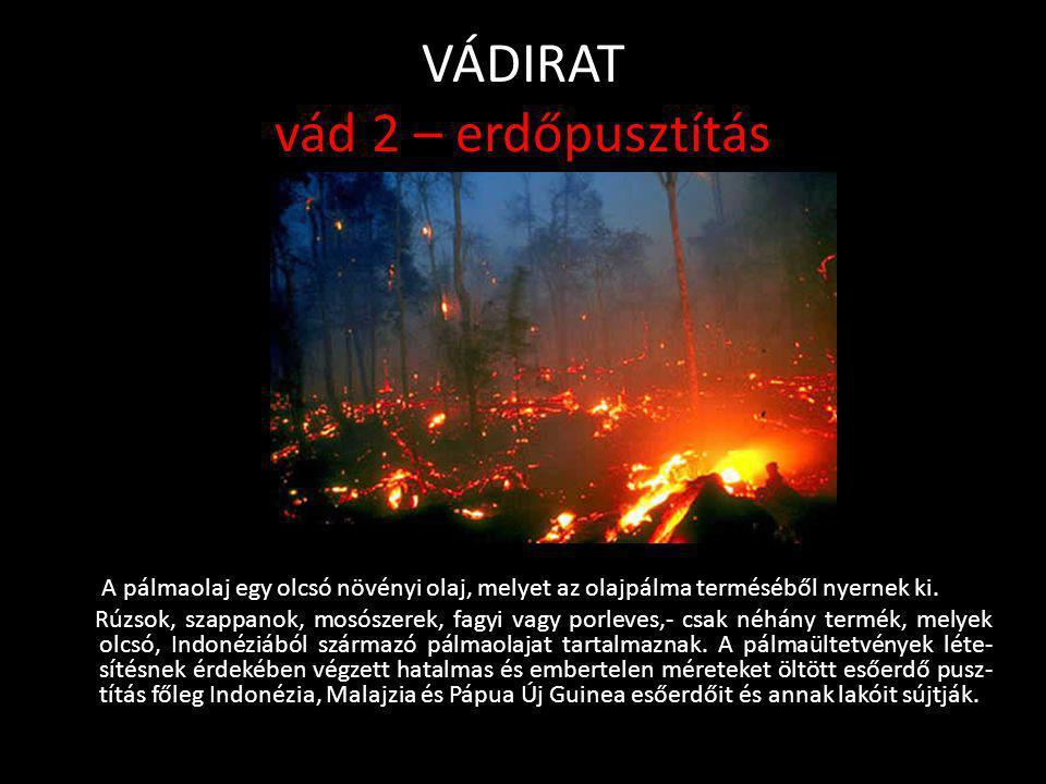 VÁDIRAT vád 2 – erdőpusztítás