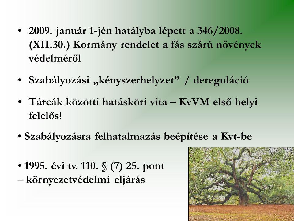2009. január 1-jén hatályba lépett a 346/2008. (XII. 30
