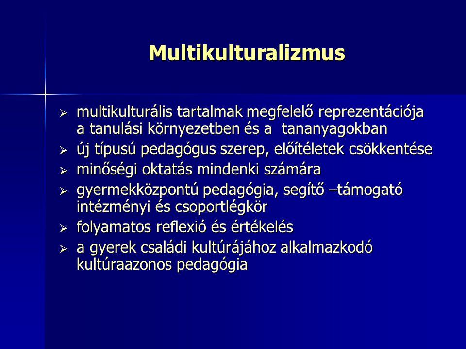 Multikulturalizmus multikulturális tartalmak megfelelő reprezentációja a tanulási környezetben és a tananyagokban.