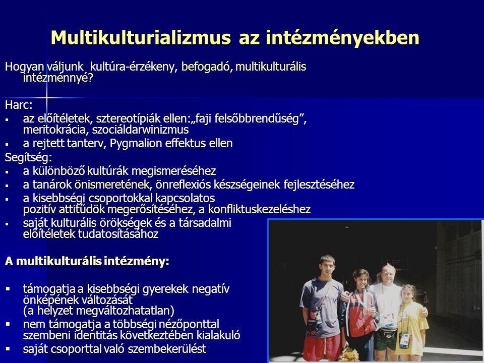 Multikulturializmus az intézményekben