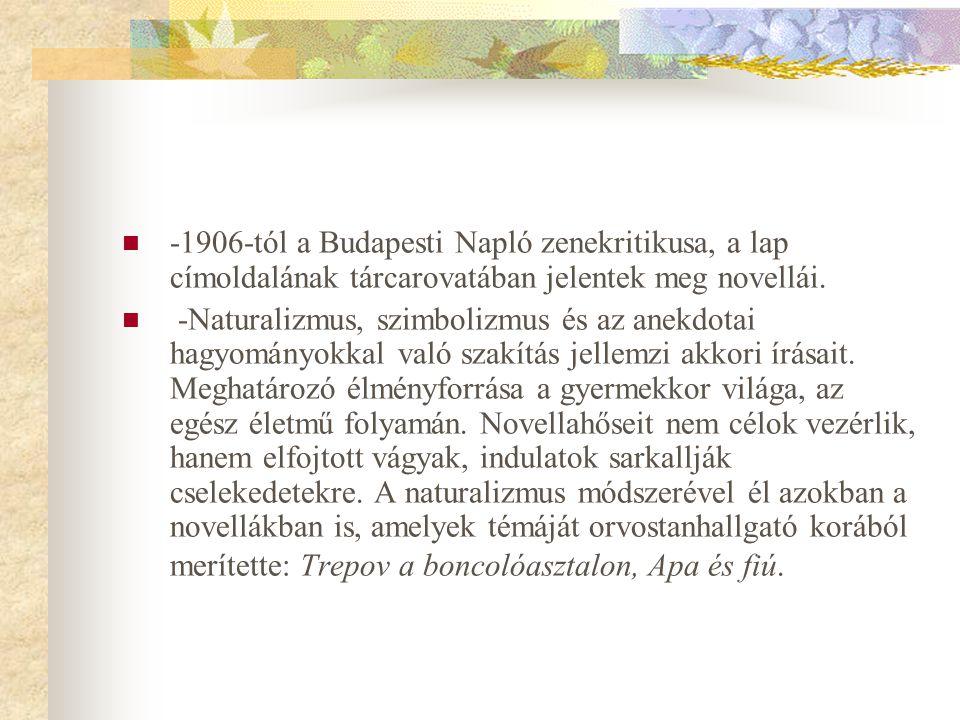 -1906-tól a Budapesti Napló zenekritikusa, a lap címoldalának tárcarovatában jelentek meg novellái.