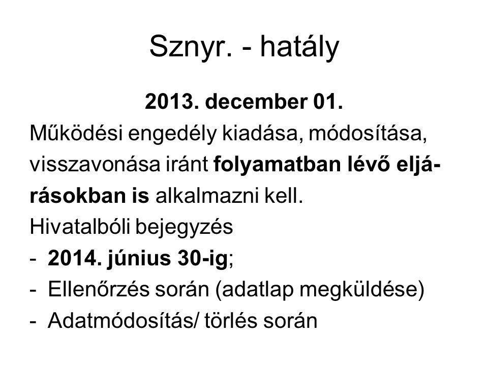 Sznyr. - hatály 2013. december 01.