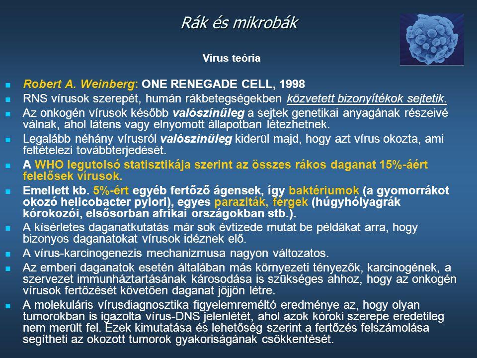 Rák és mikrobák Robert A. Weinberg: ONE RENEGADE CELL, 1998