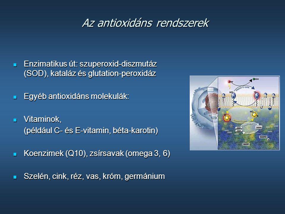 Az antioxidáns rendszerek