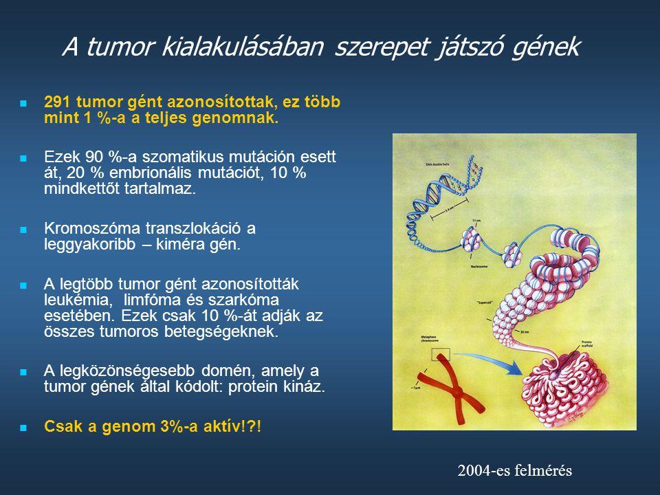A tumor kialakulásában szerepet játszó gének
