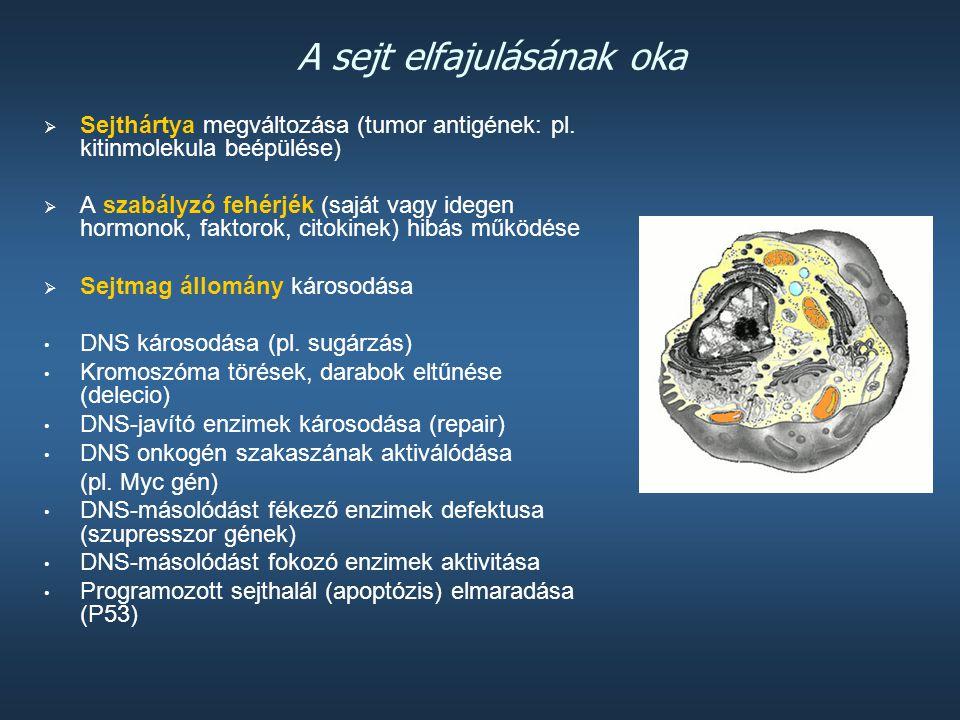 A sejt elfajulásának oka