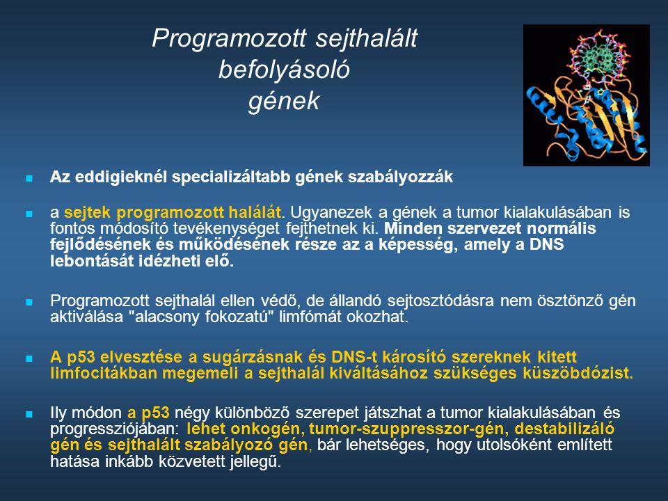 Programozott sejthalált befolyásoló gének