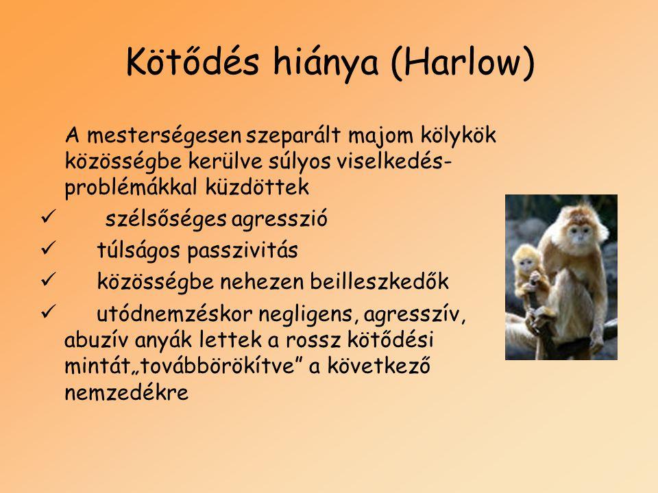 Kötődés hiánya (Harlow)