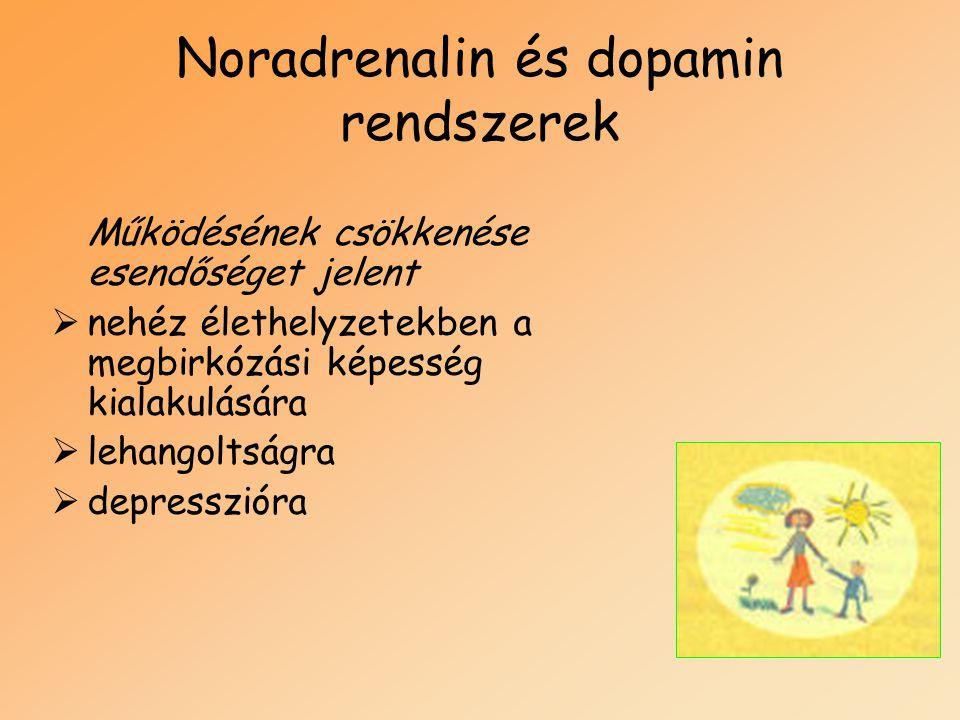 Noradrenalin és dopamin rendszerek