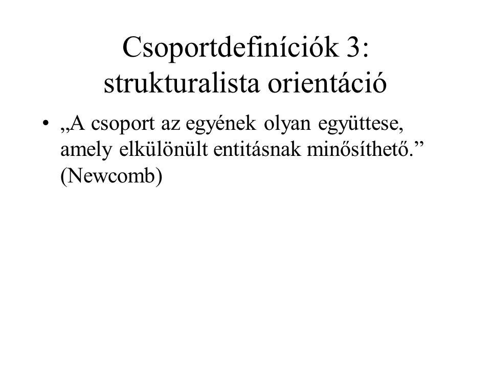 Csoportdefiníciók 3: strukturalista orientáció