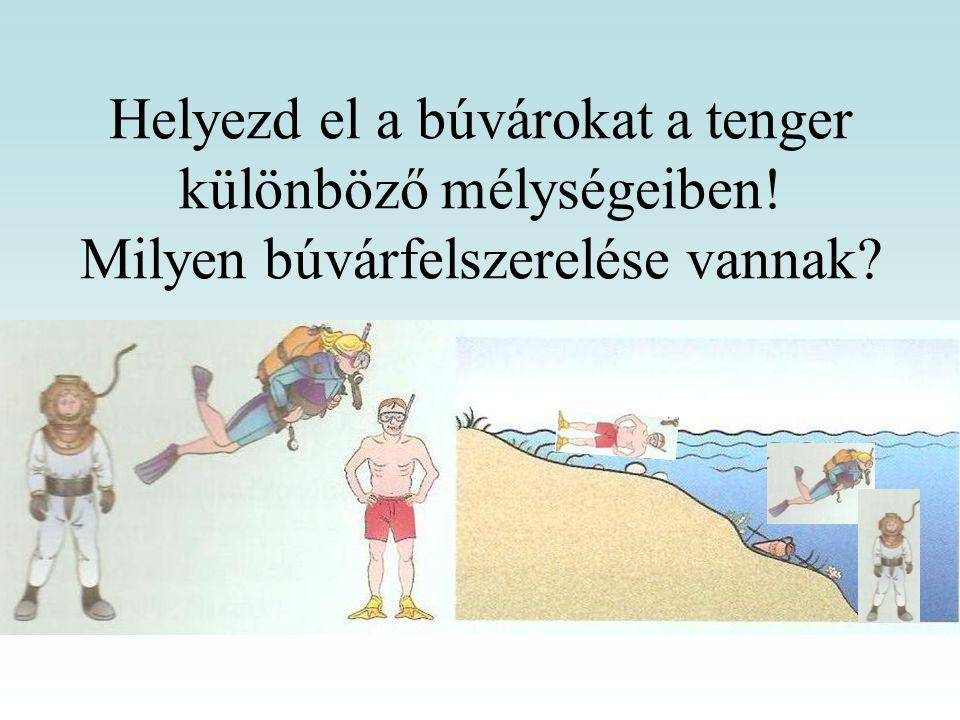 Helyezd el a búvárokat a tenger különböző mélységeiben