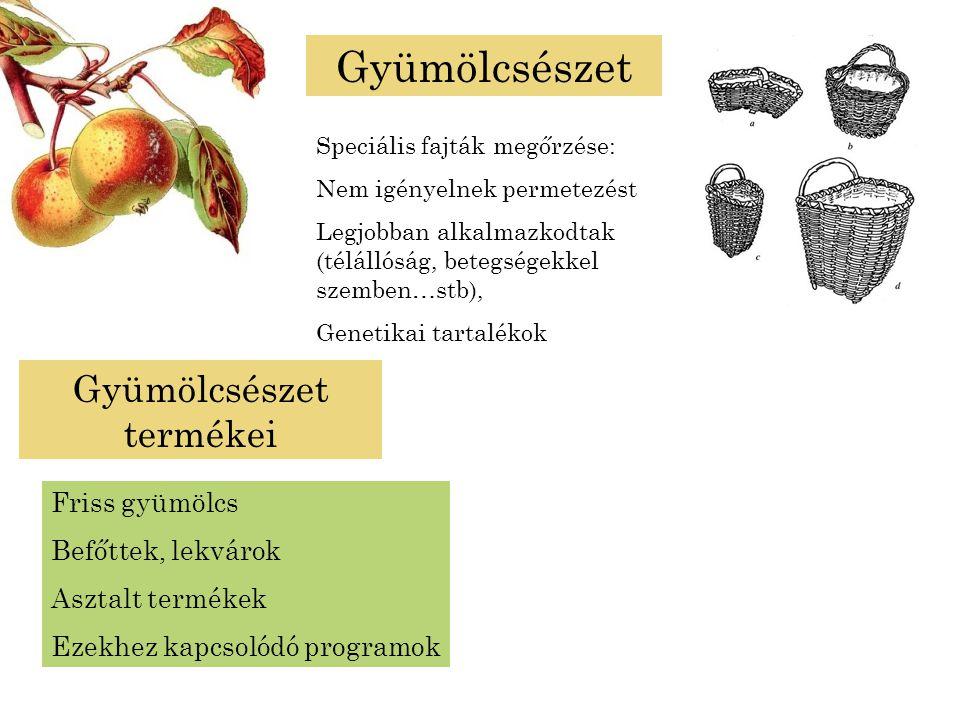 Gyümölcsészet termékei