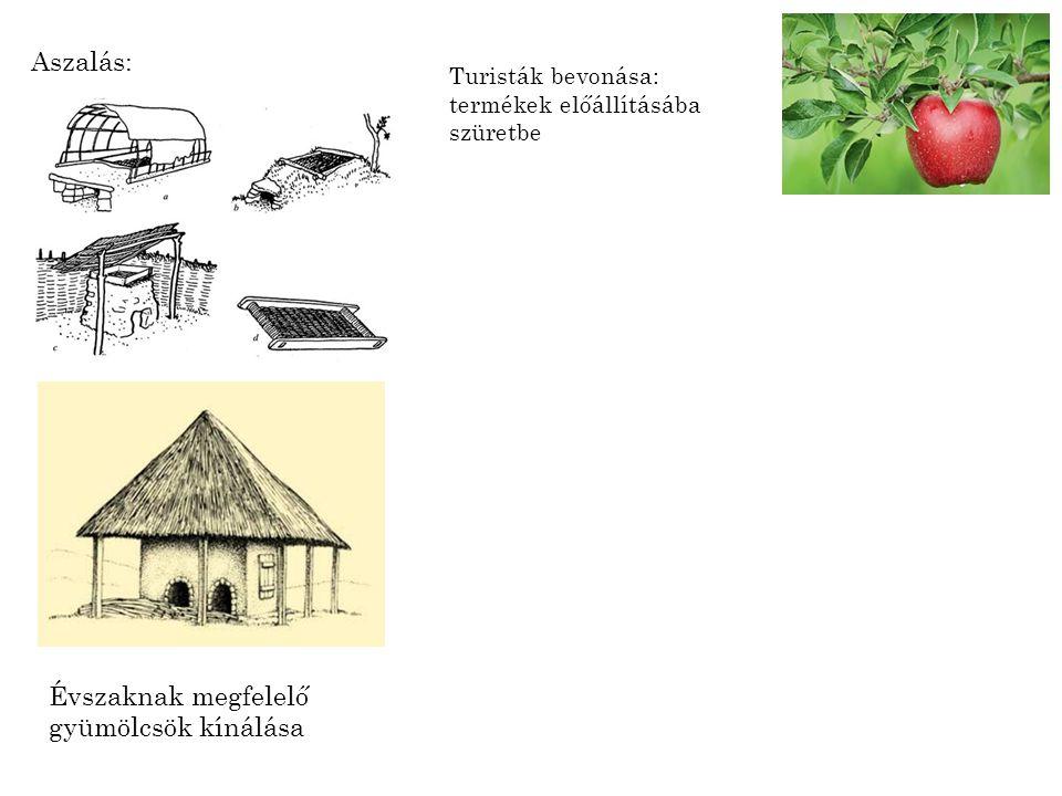 Évszaknak megfelelő gyümölcsök kínálása
