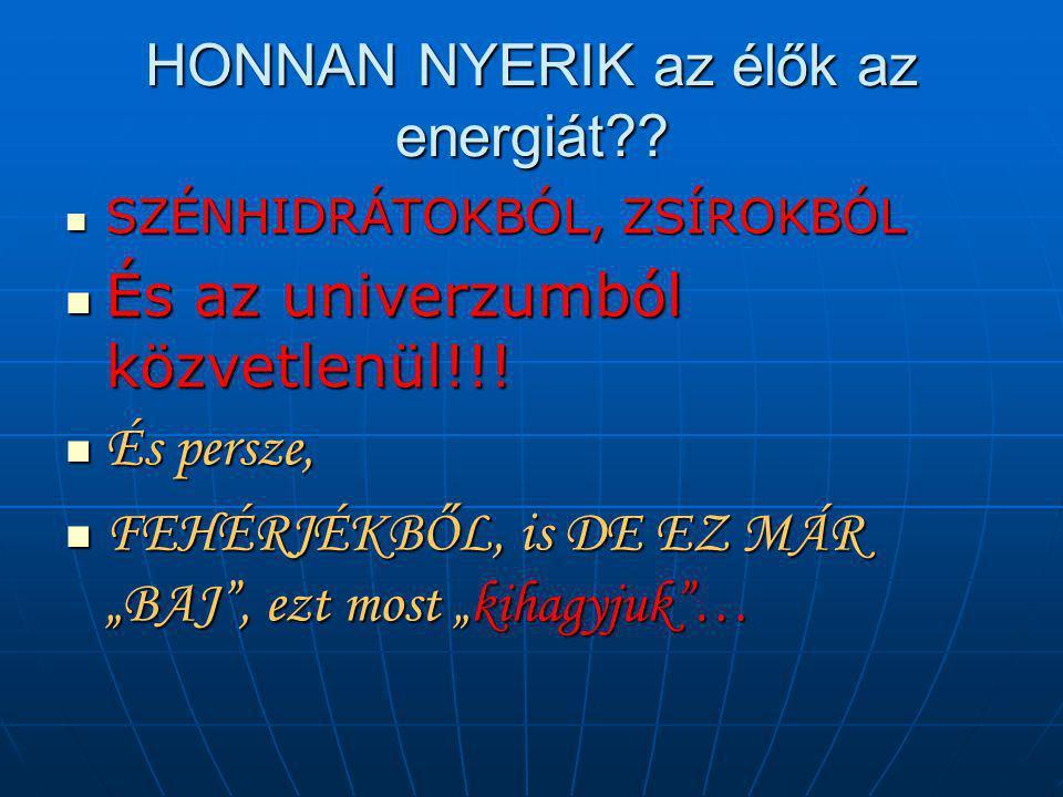 HONNAN NYERIK az élők az energiát