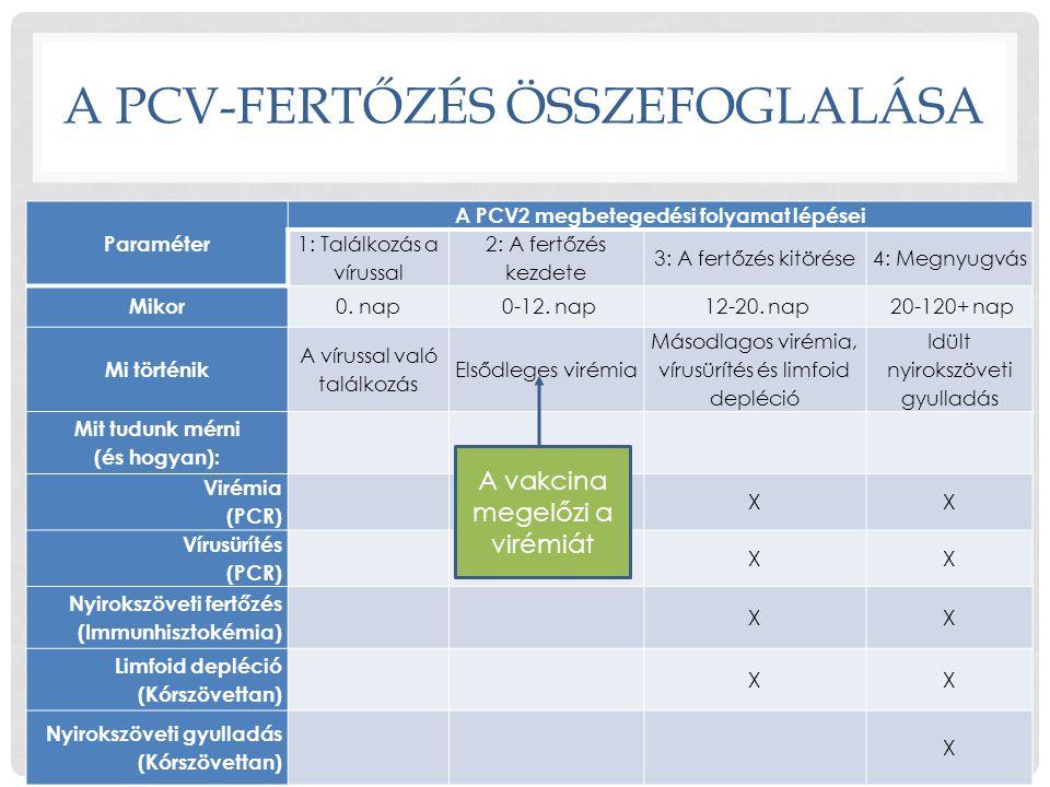 A PCV-FERTŐZÉS ÖSSZEFOGLALÁSA
