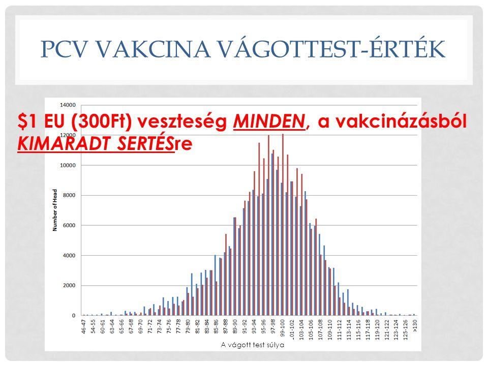 PCV VaKCINA VÁGOTTEST-ÉRTÉK