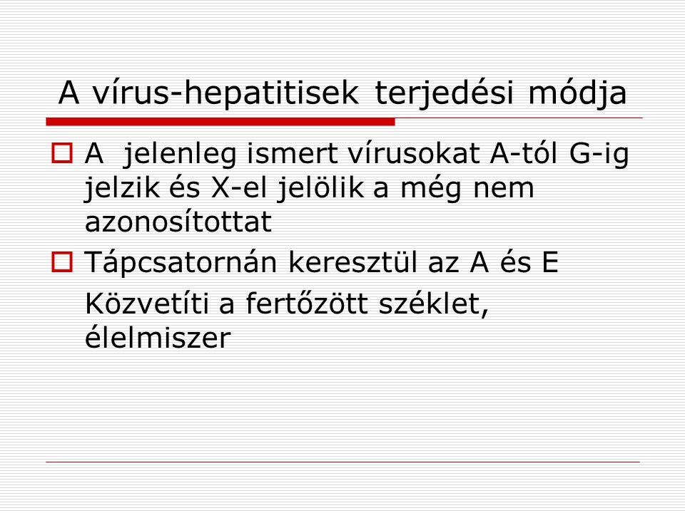 A vírus-hepatitisek terjedési módja
