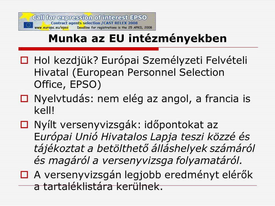 Munka az EU intézményekben